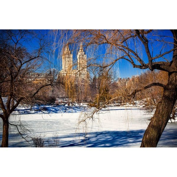 Central-Park-in-Winter
