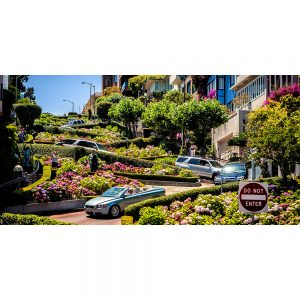Lombard-Street-or-crooked-Street